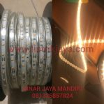 Strip Led DC 12 Volt Model Selang IP68