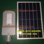 Lampu PJU LED Solar 50W Two In One